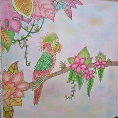 Take A Peek At This Great Artwork On Johanna Basfords Colouring Gallery Find Pin And More Magical Jungle Coloring Book
