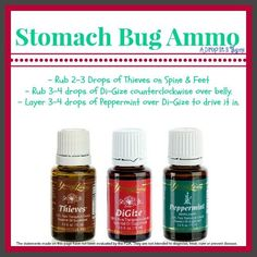 Young Living Essential Oils for Stomach Bug/Flu For more information on purchasing Young Living Oils contact me at vanessayoungliving@yahoo.com or order here: http://www.youngliving.com/signup/?isoCountryCode=US&sponsorid=1488461&enrollerid=1488461