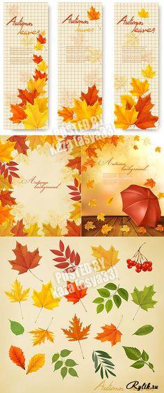 Осенние листья, баннеры и фоны в векторе. Autumn leaves 8