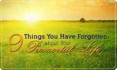 9 Things You Have Forgotten about Your Premortal Life