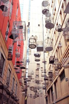 Forgotten Songs, hung in Angel Place Sydney, these bird cages are accompanied by the sounds of the birds that once inhabited the area. I went and it is so beautiful. Bird Cages, Photo Diary, Plein Air, Art World, Installation Art, Bird Houses, Art Images, Street Art, At Least