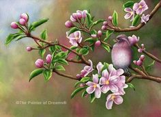 Spring Rhaposdy by Arkansas artist Sheri Hart