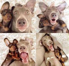 Selfies!!!
