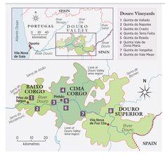 The discovery of Douro terroir - Decanter