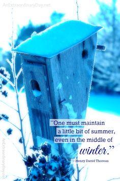 Thoreau Winter Quote