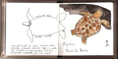 Rabiscos e Aguarela