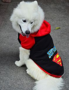 Superhero Hoodie for Large Dogs Sizes 2XL-9XL