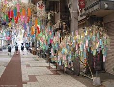 You can find the slips of paper with wishes written on them all over Japan around Tanabata, not just at the matsuri. Tanabata, Festival Celebration, Paper Packaging, Worlds Of Fun, Childhood Memories, Pastel, Japan, 7th Month, 80s Party