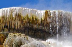 """Pure"" - Yellowstone"