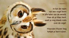 #citaten #woorden #kijken Quote van de week 14-2013 -- door Tekstbureau Van Ginneken