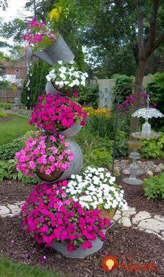 Toto vám budú susedia len ticho závidieť: Šikovní záhradkári ukázali nápady, ako premeniť obľúbené letné kvietky na najkrajšiu ozdobou záhrady!