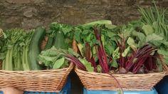 Kinneden Organics Main Street, Farmers Market, Organic, The Originals, Plants, Plant, Planets