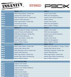 Insanity:P90X Hybrid
