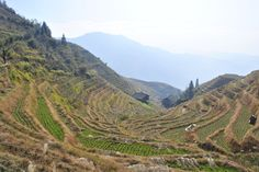 Photo: Dragon's Backbone Rice Terraces in Guangxi Province. A beautiful one day hike along rice terraces.