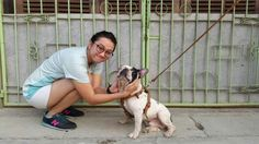 #franchie #franchbulldog #dog