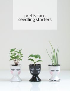 DIY Pretty Face Seedling Starters // Mother's Day