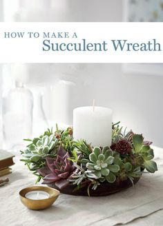 Here's a fun little weekend project that will be cheery addition to your home this winter. Enjoy it in your home and then, come Spring, hang it on your door or in the garden. If you live in a warm weather area, you can just supplement store-bought succulents with a few cuttings of your favorite garden succulents. Most of the plants used are in a pretty rosette shape, with trailing ones used to fill in the gaps.