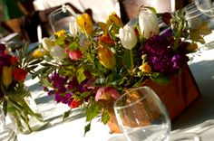 organic themed events - Google Search