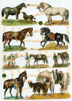One X 9 L sheet of beautifully embossed, glittered, die cut paper images connected by bridges or ladders. Simply make a few cuts to separate an Horse Clip Art, Owl Clip Art, Horse Clipping, Paper Dolls Clothing, Paper Art, Cut Paper, Vintage Cowgirl, Farm Yard, Collage Sheet