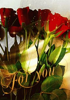 **/WONDERFUL FLOWERS/** – Közösség – Google+
