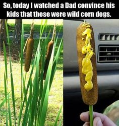 Dad convince kid about these wild corn dogs meme. Laugh your self out with various memes that we collected around the internet. Haha Funny, Funny Cute, Funny Stuff, Funny Shit, Funny Things, Random Stuff, Hilarious Memes, Funny Humor, Funniest Things
