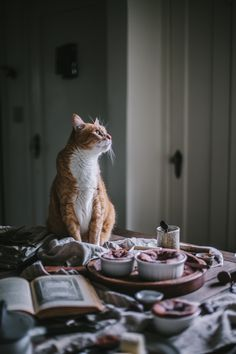 Chocolate + Goat Cheese Souffle + A Valentine's Giveaway by Eva Kosmas Flores   Adventures in Cooking