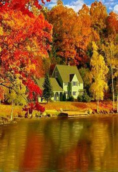 ... В багрец и золото одетые леса...