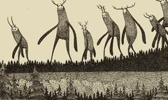 , Wandering Beasts by John Kenn Kenn writes and...