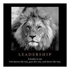 Motivational Leadership Quote Lion Pride