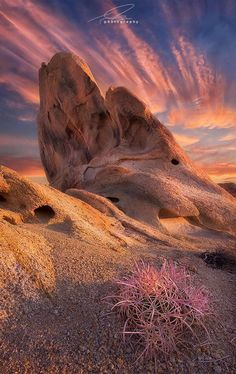 Alabama Hills, Lone Pine, California, USA  A Barrel Cactus gets a touch of morning sun during this beautiful morning. The sandstone mounds are scattered around for miles in this area, resting at the feet of Sierra giants, particularly Mt. Whitney. It's one of the most filmed outdoor areas in the world.   by Ted Gore  https://www.facebook.com/144196109068278/photos/pb.144196109068278.-2207520000.1419023377./180078548813367/?type=3&theater
