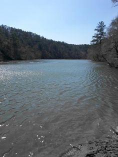 Cahaba River Cahaba River, My Town, Beach, Water, Outdoor, Gripe Water, Outdoors, The Beach, Beaches