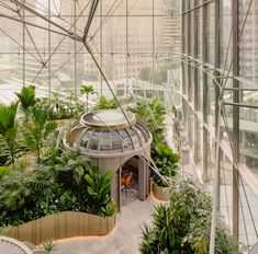 Offices and meeting rooms are nestled among tropical plants in this wealth management centre in Singapore by local studio Ministry of Design. School Office Design, Workplace Design, Indoor Garden, Indoor Outdoor, Home And Garden, Nendo Design, Garden Pods, Brass Planter, Botanical Decor