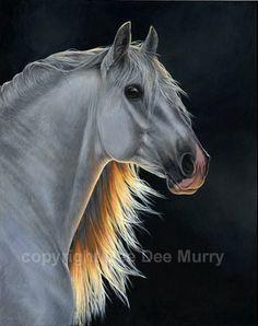 Dee Dee Murry Art Studio: Andalusian Stallion 6