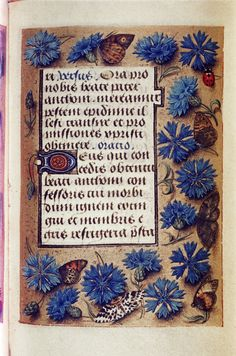 Book of Hours. So-called 'Hours of Engelbert of Nassau'. Medieval Books, Medieval Manuscript, Medieval Art, Collage Illustration, Botanical Illustration, Illuminated Letters, Illuminated Manuscript, Nassau, Flower Art