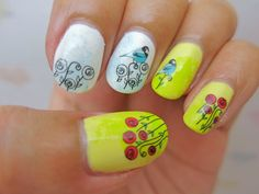 Love Bird and Roses Decal BLE1771 | chichicho~ nail art addicts