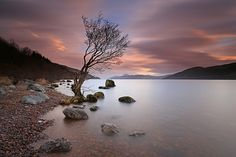 A high Loch Ness. by Gordie Broon. Loch Ness Scotland, Scotland Uk, Lago Ness, Arbour Day, Clouds Pattern, Beautiful Landscapes, Beautiful Scenery, The Great Outdoors, Natural Beauty