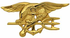 US NAVY SEAL US Navy Qualification Badges Special Warfare