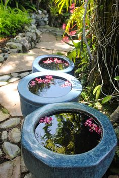 Pot Water Garden:  Laguna Beach Garden Tour Highlights | Laguna Dirt