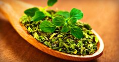 Think organo is just for pizza? Here's what it can do for your health: http://blog.lifeextension.com/2015/08/the-health-benefits-of-oregano.html #oregano #nutrition