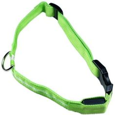 LED Safety Dog Collar, Assorted Colors, Green