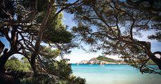 The best beaches on Mallorca's north-east coast including Cala Agulla, Cala Mesquida and Cala Torta Mallorca Beaches, East Coast Beaches, Beautiful Places, Beautiful Pictures, Calla, Spain Holidays, Balearic Islands, Majorca, Canary Islands