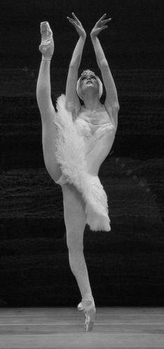 photography of prima ballerina Svetlana Zakharova in Swan Lake #ballet #ballerina #balletbeautiful #balletart
