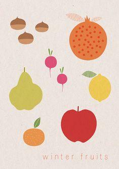 stefania manzi's winter fruits illustration. oranges, chestnuts, radishes, pomegranate, lemon, pear, apple.