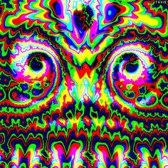 I Looked Into His Eyes, That's All I Remember... Acid Trip Art, Acid Art, Cool Optical Illusions, Art Optical, Fractal Images, Fractal Art, Trippy Gif, Marijuana Art, Illusion Art