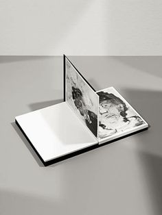 Product photography / The Most Beautiful Swiss Books of 2012 (adjudicated in January 2013)