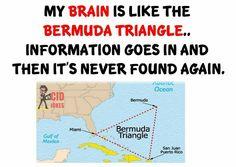Bermuda /_\