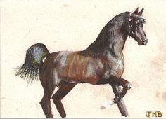 Arabian Horse.  Acrylic on hemp card stock.  Jeremy Backlin 2014