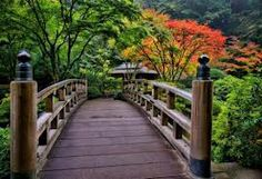 A quiet place to dream...Japanese bridge