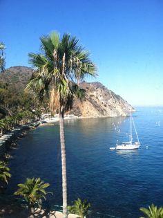 Santa Catalina Island, California  (1936×2592)