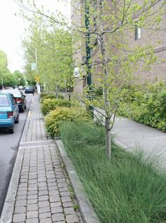 for green pockets in neighborhoods --Portland Oregon Green Street 1c